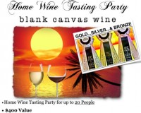 Home Wine Tasting Party for up to 20 People