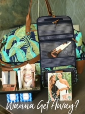 Ever Beauty Makeup, Brushes and Stella and Dot Bag/Travel Case